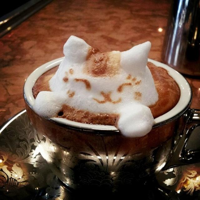 cat foam in coffee cup