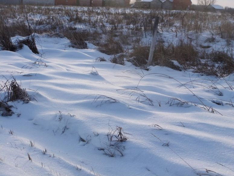snow-r