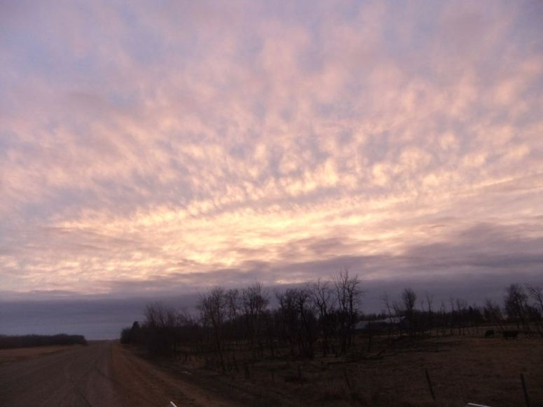 evening sky r