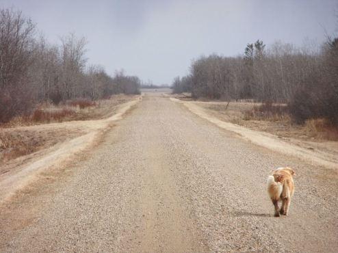 road r