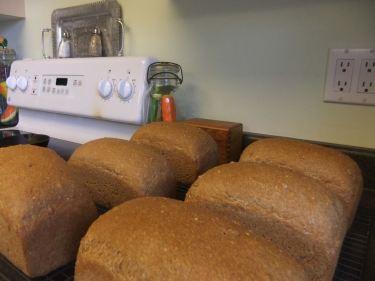 bread for ev