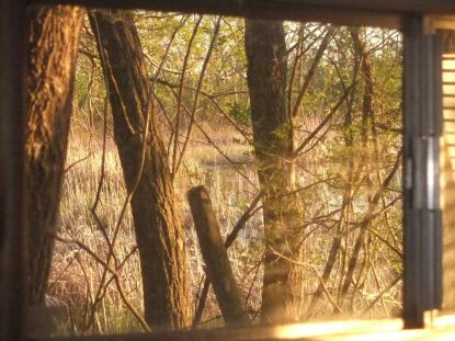 camper window dugout