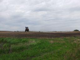 field one