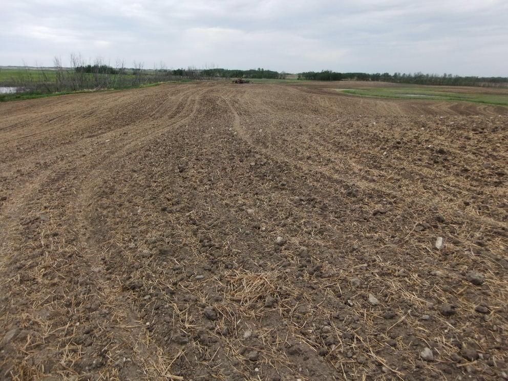 field three