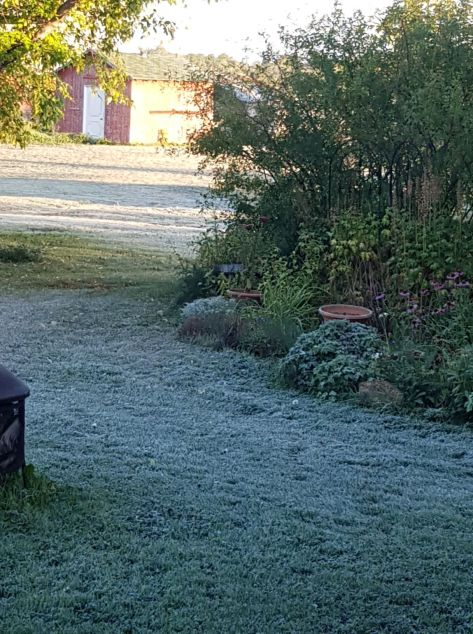 First Frost Sept 5 2018