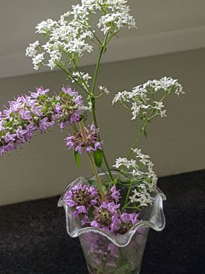 meadowsweet and mint